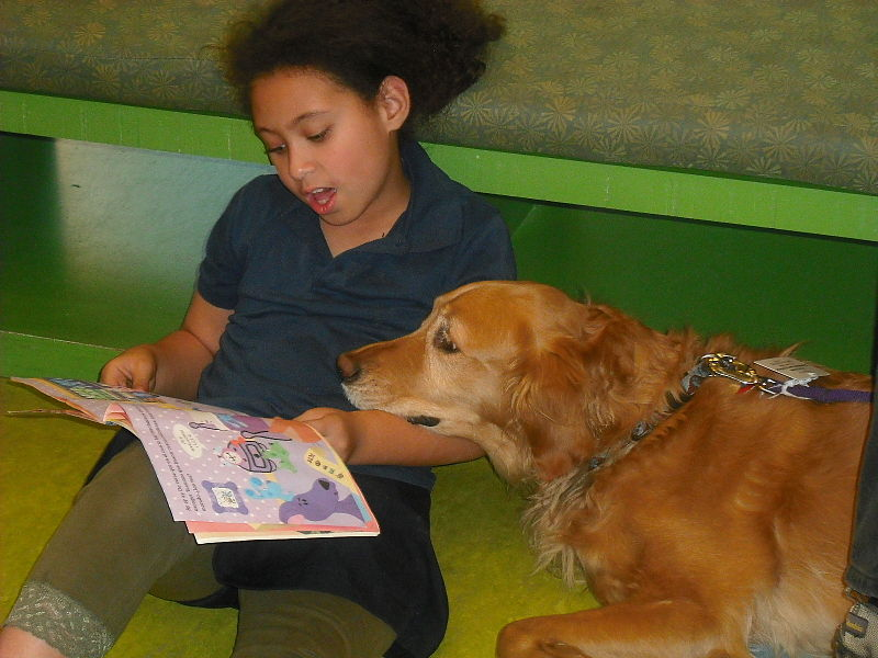 Bark for Books at the Naperville Public Library