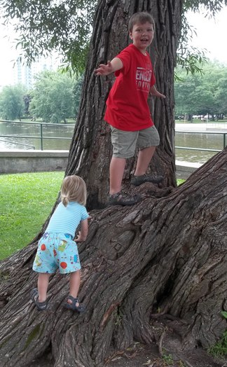 Boys climb a tree on their own.  Photo by author.