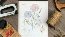 Image of pressed flowers on a notepad with tools surrounding it.