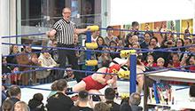 Mondo Lucha wrestlers in the library. Photo credit Sam Gaudet