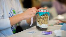Participants learned how to make holiday gifts from what is readily available in their kitchens.