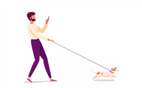 Illustration of person walking a dog while looking at their phone.