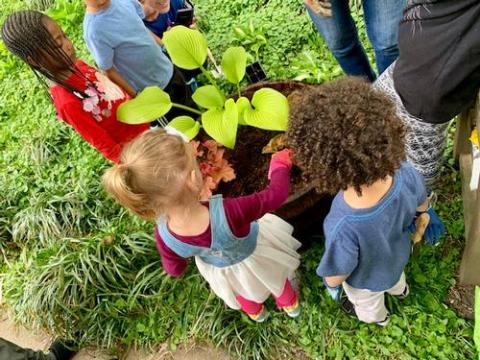 A group of kids outdoors standing around a plant