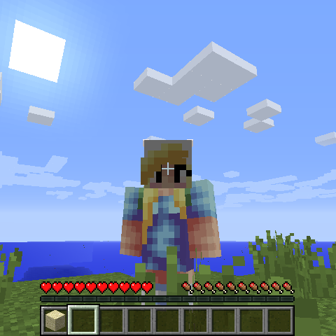 Screenshot of the author's Minecraft character
