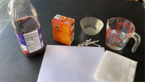 Photo of ingredients used for a science project.