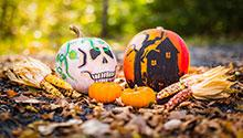 Painted pumpkins; photo by Drew Hays