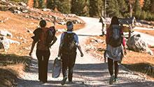Three women walking in the woods
