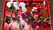 Tray of fresh flowers