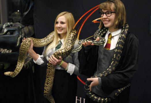 Chamber of Secrets - Yule Ball Attendees with snakes