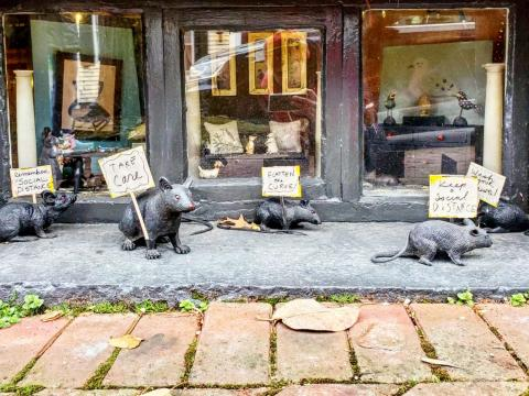 Street diorama with rubber rats holding signs.