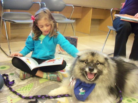 Young girl reading to fluffy dog