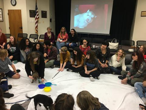 Teens and tweens play with the puppies.
