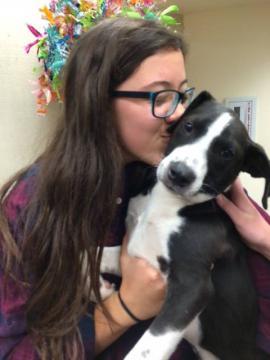 A girl kisses a puppy.