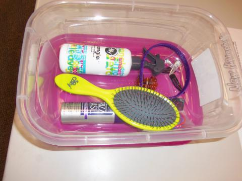 Hair styling kit