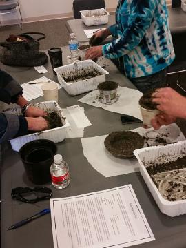 Hypertufa mushroom program participants