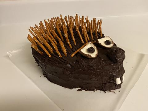 Photo of a hedgehog cake