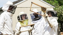 four people in protective suits learning about beekeeping